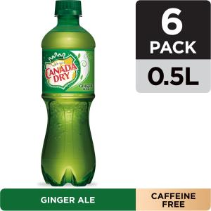 can-you-substitute-ginger-ale-for-ginger-beer-1
